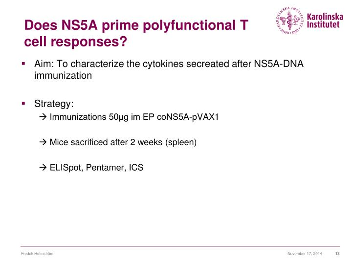 Does NS5A prime polyfunctional T cell responses?