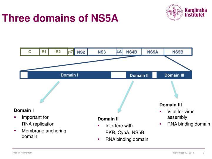 Three domains of NS5A