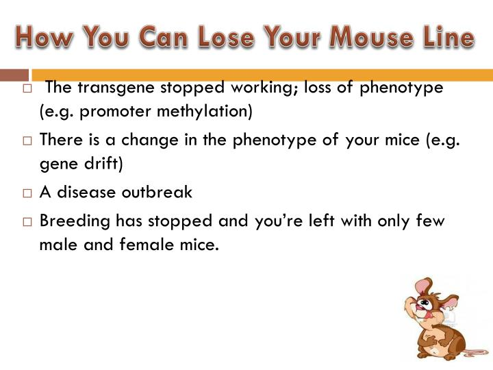 How You Can Lose Your Mouse Line