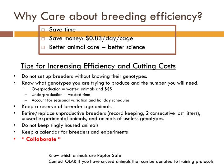 Why Care about breeding efficiency?