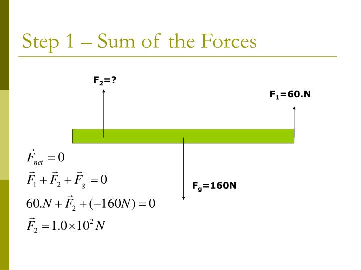 Step 1 – Sum of the Forces