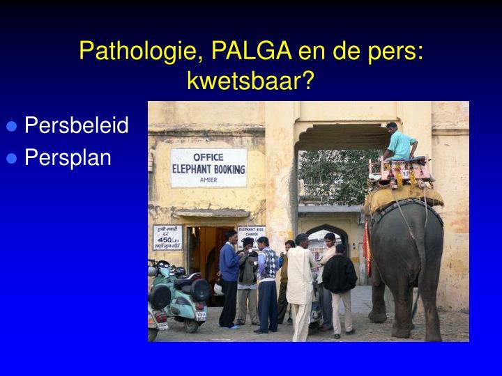 Pathologie, PALGA en de pers: kwetsbaar?
