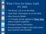 what s new for salary audit fy 200411