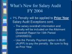 what s new for salary audit fy 20048