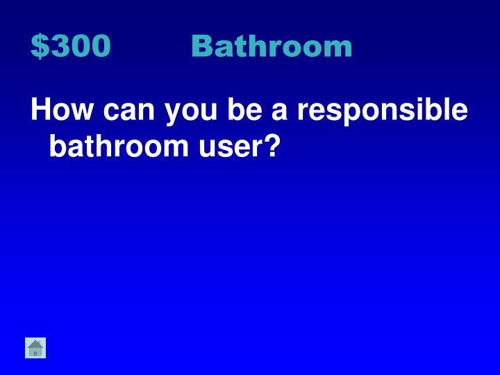 $300 Bathroom