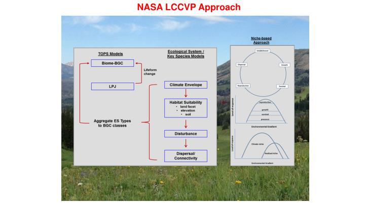 NASA LCCVP Approach