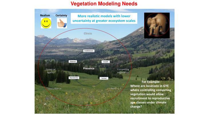 Vegetation Modeling Needs