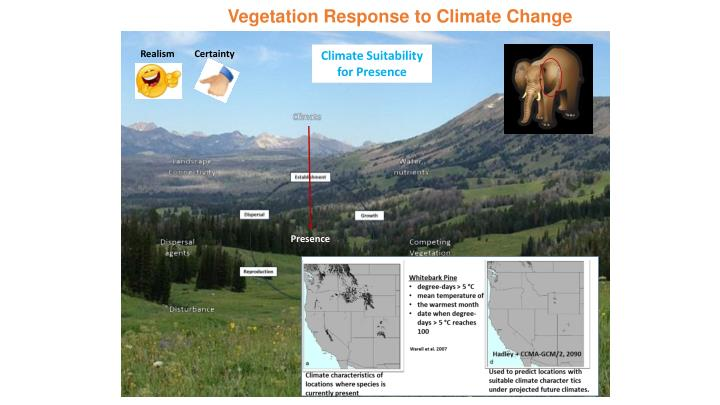 Vegetation Response to Climate Change