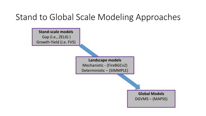 Stand to Global Scale Modeling Approaches