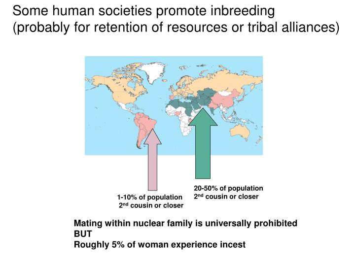 Some human societies promote inbreeding