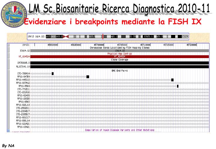 Evidenziare i breakpoints mediante la FISH IX