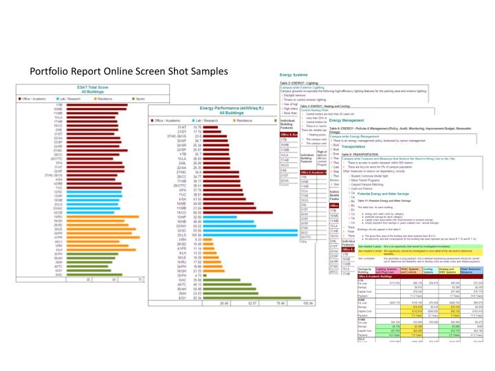 Portfolio Report Online Screen Shot Samples