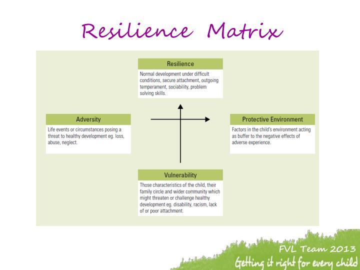 Resilience  Matrix