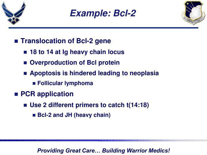 Example: Bcl-2
