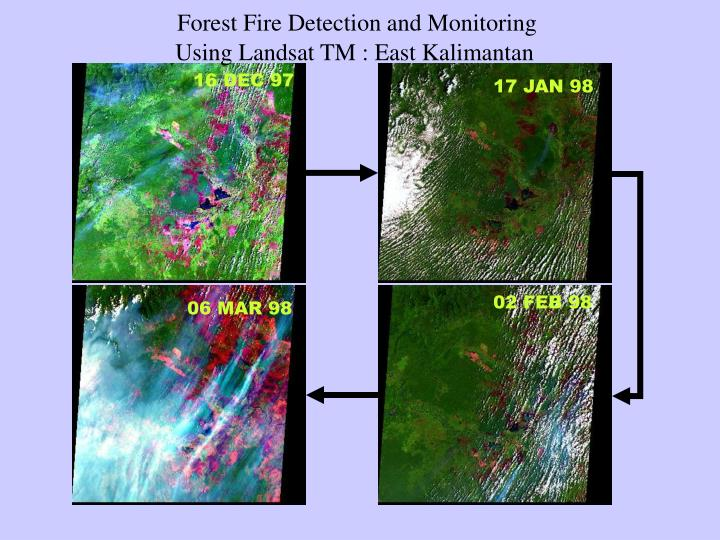 Forest Fire Detection and Monitoring