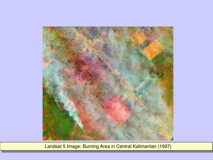 Landsat 5 Image: Burning Area in Central Kalimantan (1997)