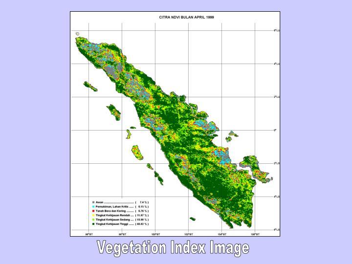 Vegetation Index Image