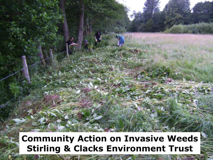 Community Action on Invasive Weeds