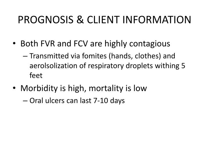 PROGNOSIS & CLIENT INFORMATION