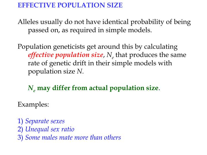 EFFECTIVE POPULATION SIZE