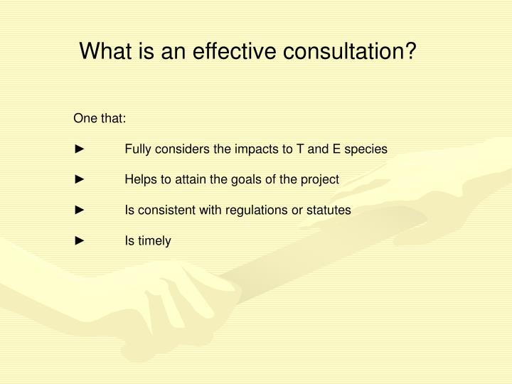 What is an effective consultation?