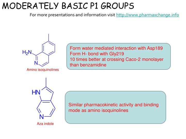 MODERATELY BASIC P1 GROUPS