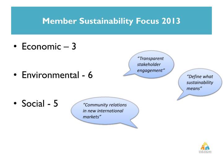 Member Sustainability Focus 2013