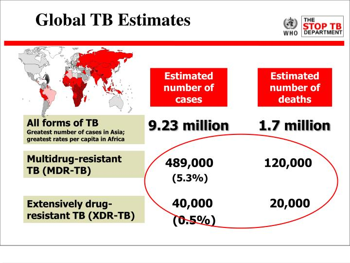 Global TB Estimates
