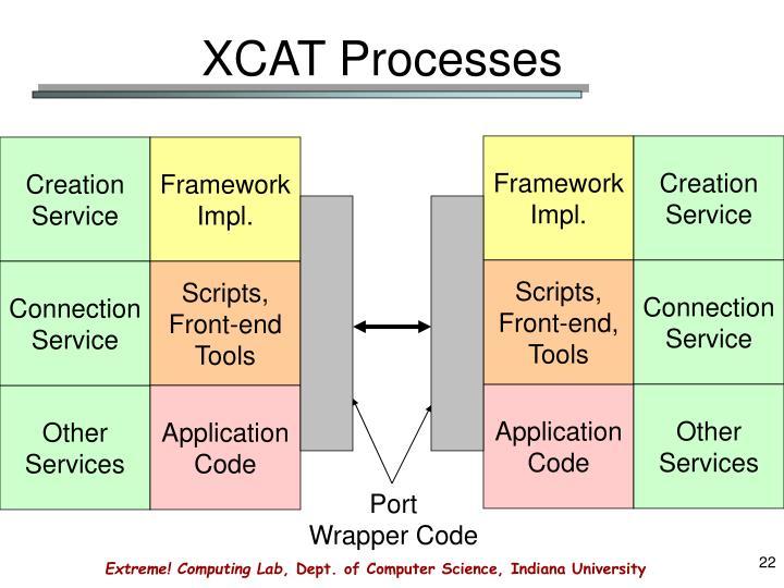XCAT Processes