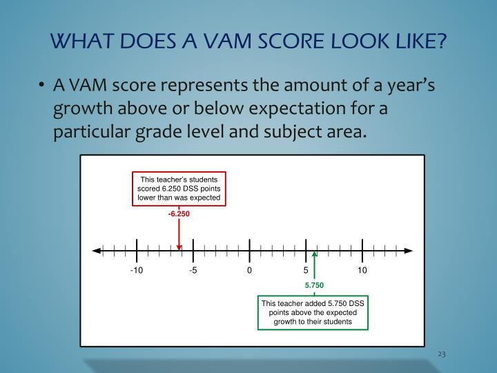 What does a VAM score look like?