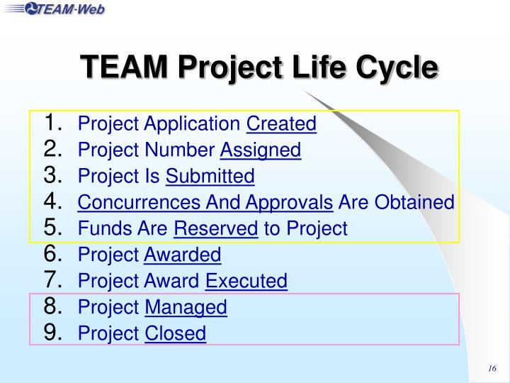 TEAM Project Life Cycle