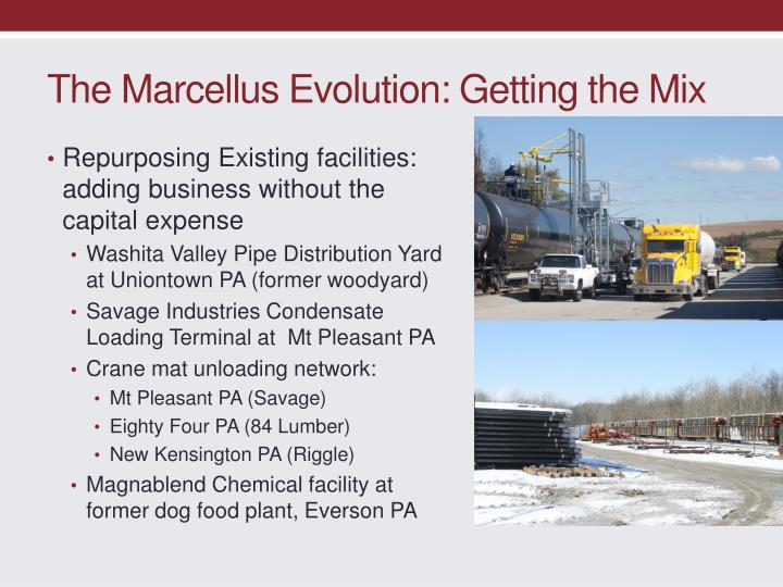 The Marcellus