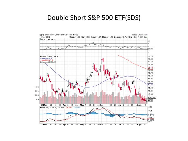 Double Short S&P 500 ETF(SDS)