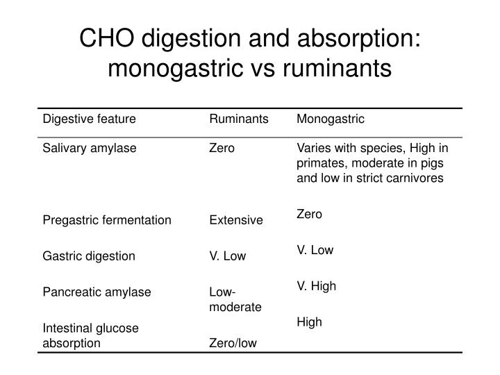 CHO digestion and absorption: monogastric vs ruminants
