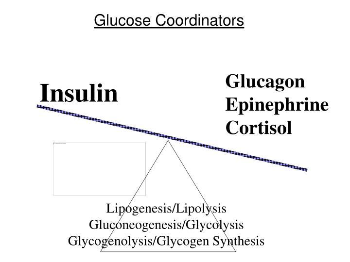 Glucose Coordinators