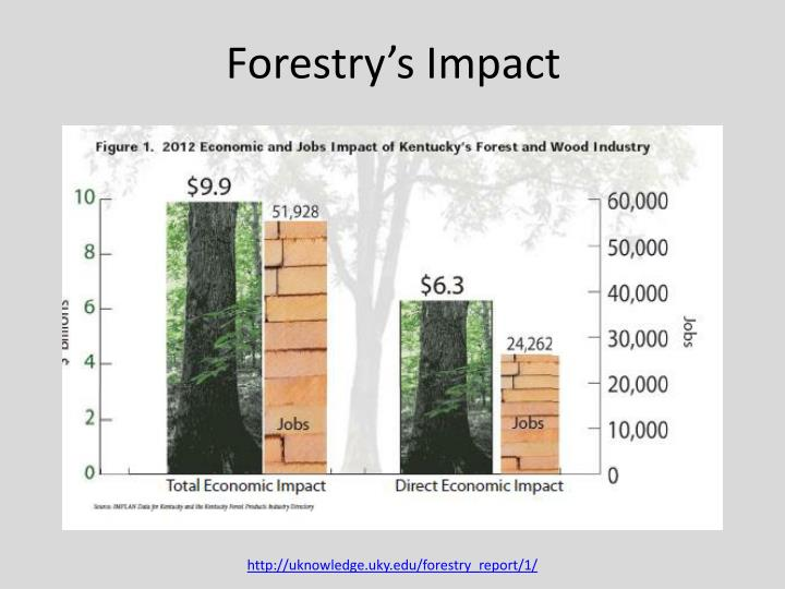 Forestry's Impact