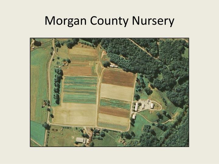 Morgan County Nursery