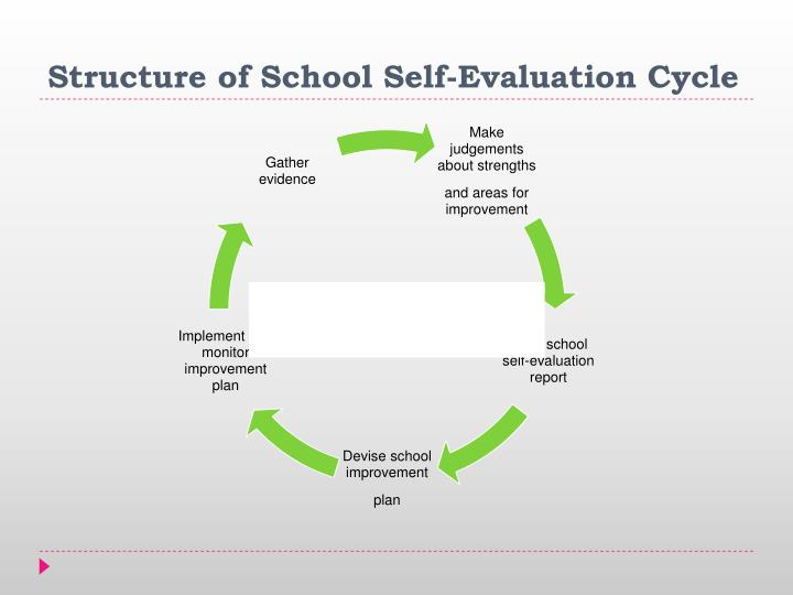 Structure of School Self-Evaluation Cycle