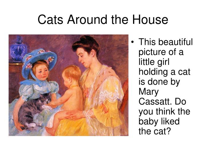 Cats Around the House