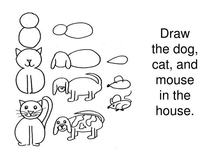 Draw the dog, cat, and mouse in the house.