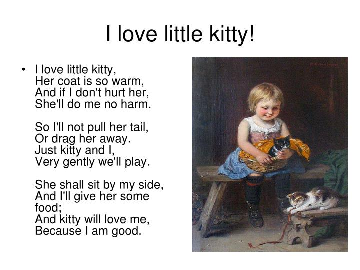 I love little kitty!