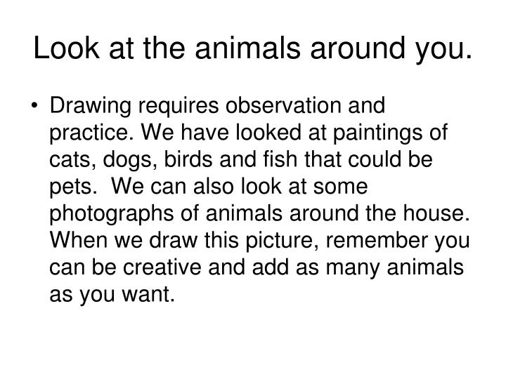 Look at the animals around you.