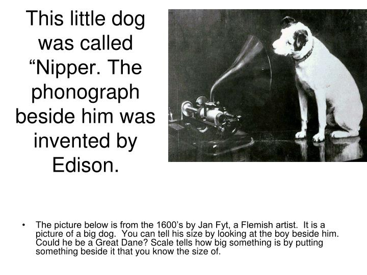 """This little dog was called """"Nipper. The phonograph beside him was invented by Edison."""