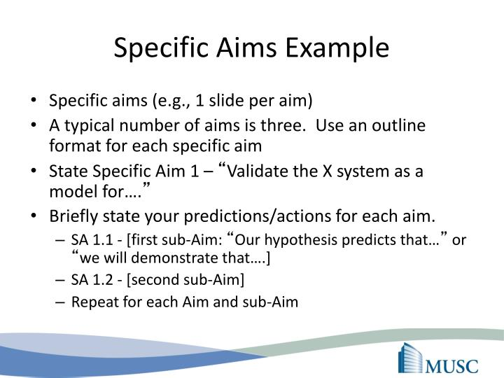 Specific Aims Example