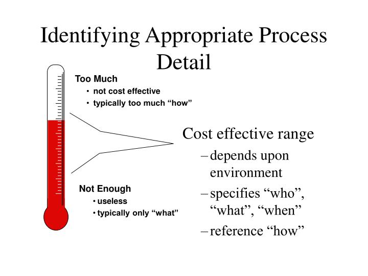 identifying appropriate process detail