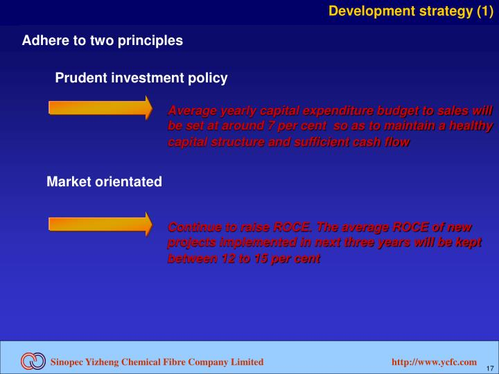 Development strategy (1)