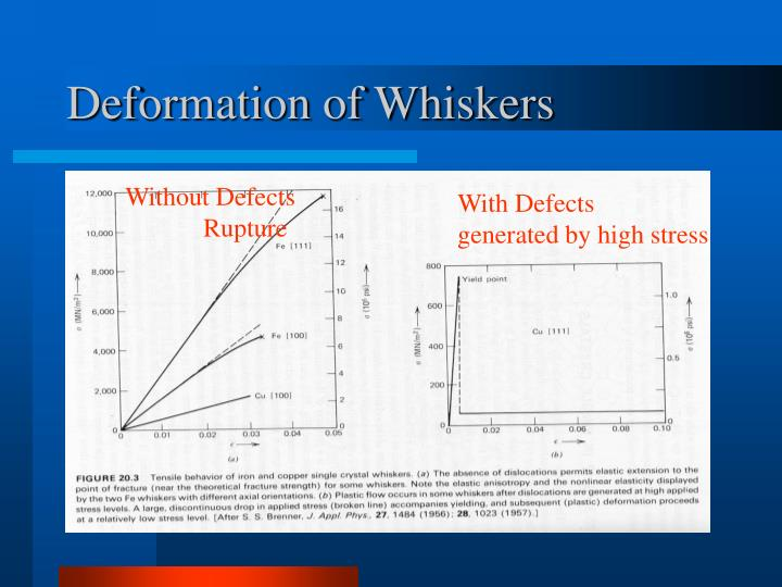 Deformation of Whiskers
