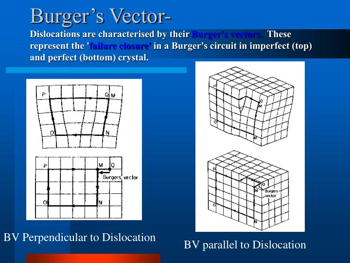 Burger's Vector-
