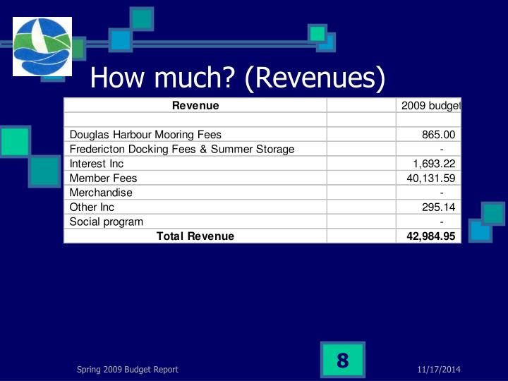How much? (Revenues)