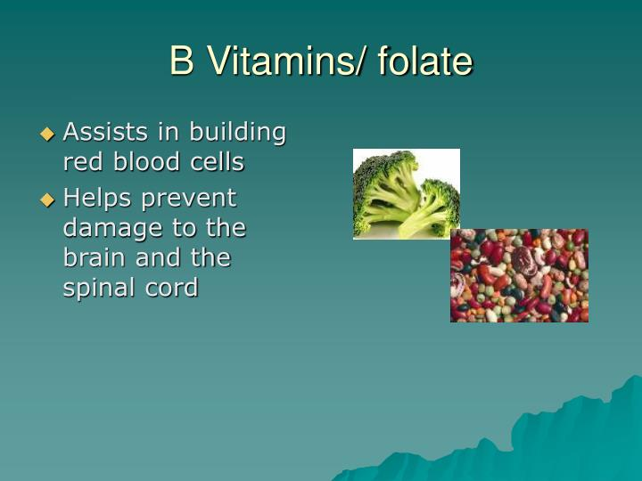 Assists in building red blood cells